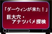 NHK教育テレビ「ダーウィンが来た!」